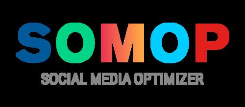 Zertifizierung zum SOcial Media OPtimizer